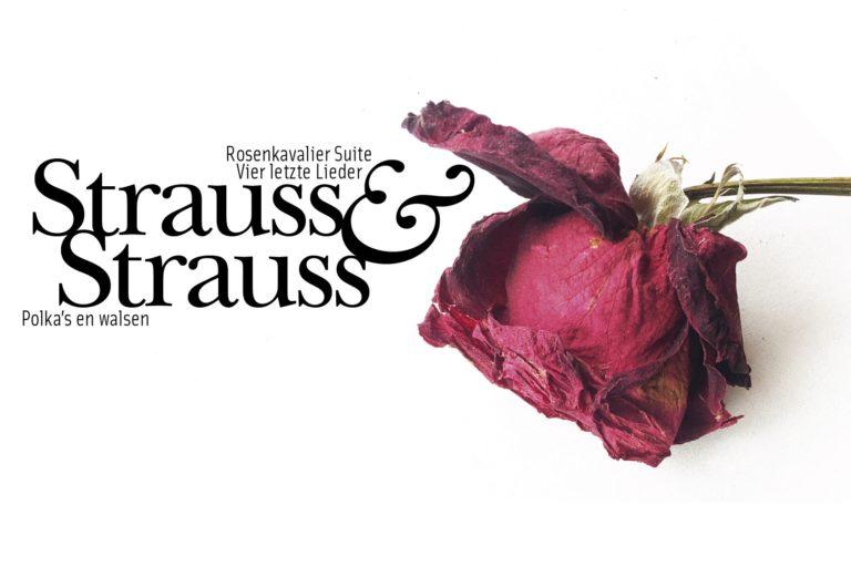 Strauss & Strauss
